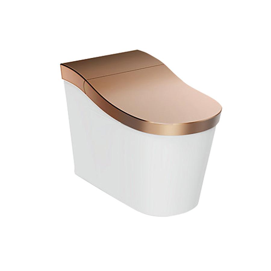 Innate Floorstanding Intelligent Toilet Kohler